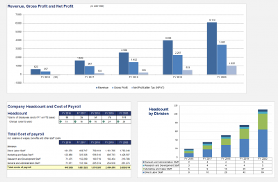 Annual Turnover, Profit, Headcount and Costs of Payroll including graphics