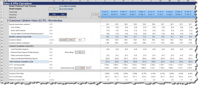 Product specific KPIs (customer acquisition cost (CAC), customer lifetime value (CLTV), etc.)