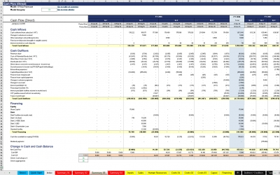 Detailed Cash Flow Statement